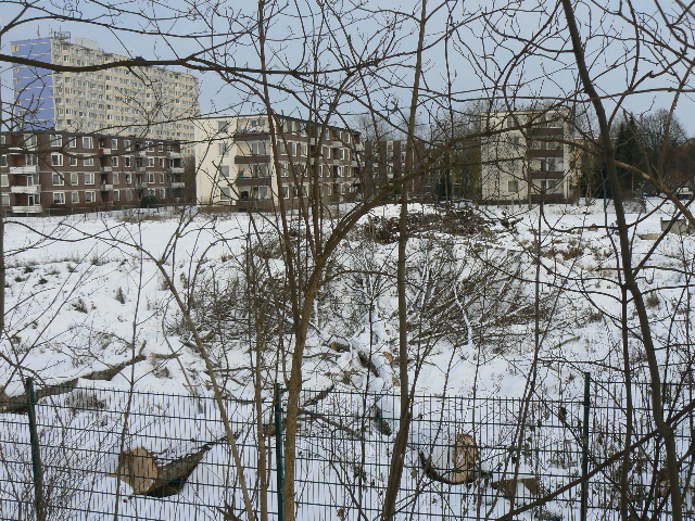 Über einen Zaun blickt man auf gefällte Bäume und Sträucher, leicht mit Schnee bedeckt, dahinter stehen eckige, vierstöckige Wohnblöcke. HInter ihnen erhebt sich ein langgestrecktes Hochhaus. Der Gesamteindruck des Bildes ist eher trist.