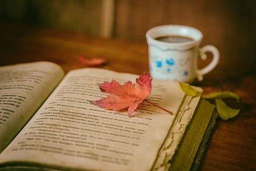 Vorschläge für Ihre Herbstferien-Lektüre